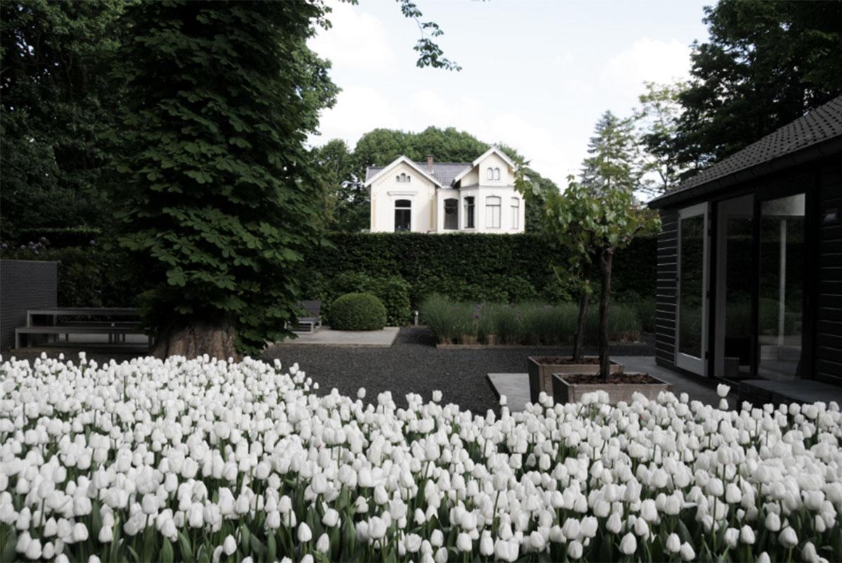 Koetshuis Haarlem 1.1